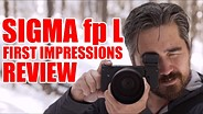 Sigma fp L First Impressions Review