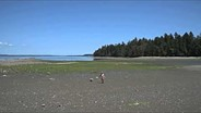 Nikon D810 beach pan - flat