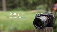 Sony a1 overview