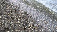Sony a7R beach sample video
